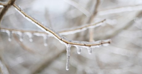 Ontario and Quebec ice storms cost insurers more than $85 million