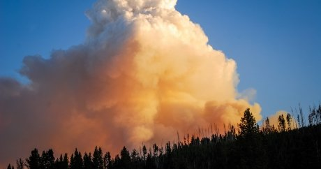 Wildfires happen in B.C every year. Why aren't more residents insured?