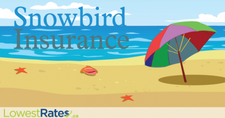 12 essential snowbird insurance questions answered